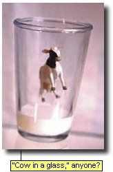 'Cow in the glass,'  anyone?