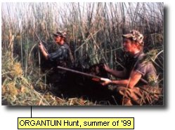 ORGANTUIN hunt. summer of '99.