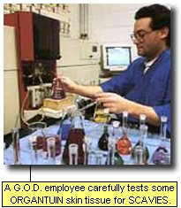 A G.O.D. employee carefully tests ORGANTUIN skin tissue for SCAVIES.