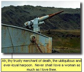 Ah, thy trusty merchant of death, the ubitquitous and ever-loyal harpoon. Never shall I love a woman as much as I love thee.